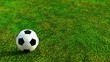 Soccer ball rolling on green grass HD