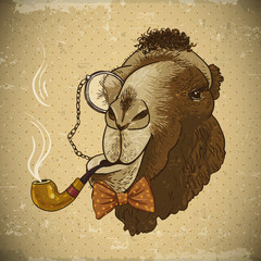 Vintage Card Hipster Animal Camel with pipe