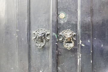 Wooden door with metal callers