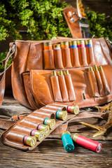 Cartridge belt and bag hunting