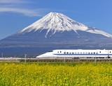 菜の花畑を疾走する新幹線 - 64843068