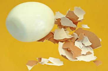 gekochtes Ei mit Schale