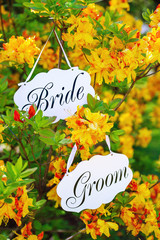 Bride and groom decoration boards handing on the blooming tree