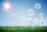 Digitally generated dandelions against blue sky - 64850250