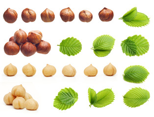 Forest hazelnuts isolated