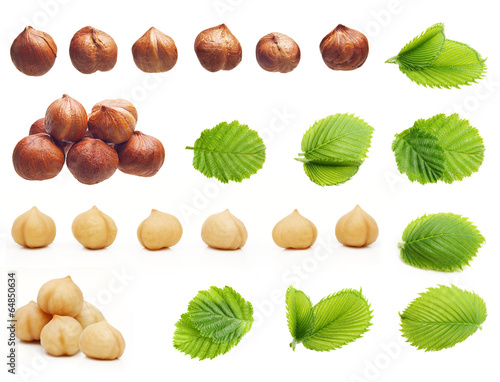Tuinposter Boodschappen Forest hazelnuts isolated