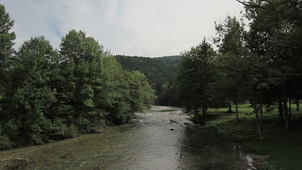 River and forest in Slovenia
