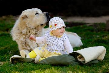 Девочка и собака алабай