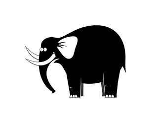Surprised elephant