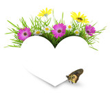 White paper heart with flowers, grass and copy-space isolated