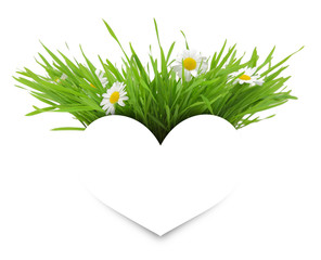 Paper white heart with flowers, grass and copy-space isolated