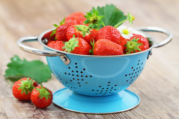 Strawberries in blue colander on wooden surface