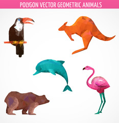 collection of vector colorful  polygonal animals