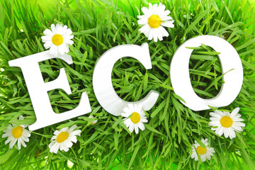Grass with flowers and white text ECO on it