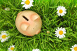 Piggy bank on green grass with flowers background - 64862202