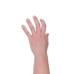 Hand holding something.
