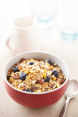 Milk and muesli bowl
