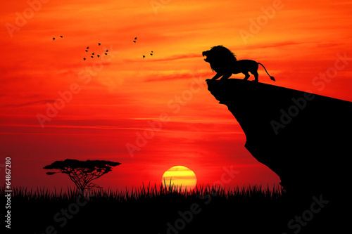Lion on rope at sunset - 64867280