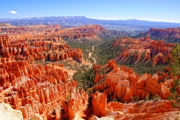View over the hoodoos of Bryce Canyon National Park, USA