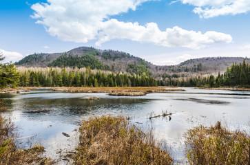 Lac dans la nature