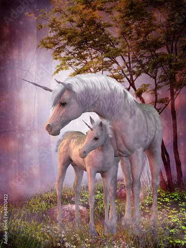 Leinwandbild Motiv Unicorn Mare and Foal