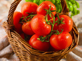 Tomates grappes fraîches et salade