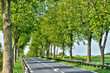France, a picturesque country road in Arthies
