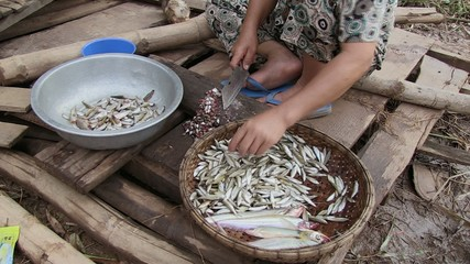 Woman cut  small fish , cambodia,