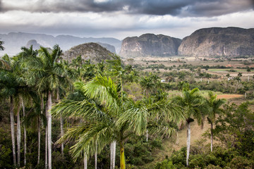 The valley of Vinales in Cuba UNESCO World Heritage