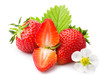 Strawberries with leaves and blossom. Isolated on a white