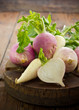 Fresh turnip and white radish on the wooden table