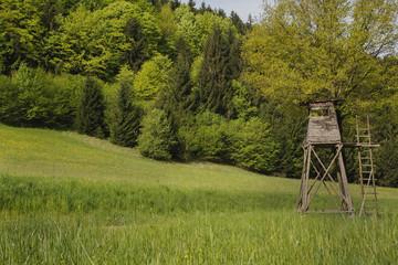 Jägerstand oder Jagd Kanzel auf grüner Wiese
