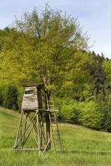 Hochsitz oder Jagdkanzel im Sommer
