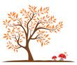 Herbst - Laubbaum mit Pilzen
