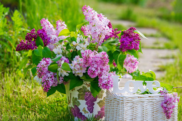 Still life with bunch of lilac flowers