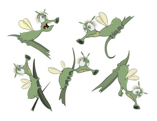 Set of green Insects cartoons