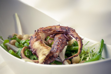 Cold served bean salad, freeze lettuce with warm grilled octopus