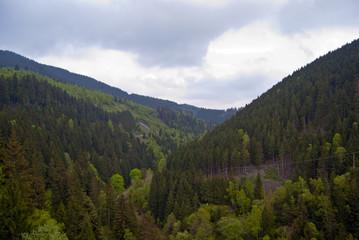 Aussicht Harz