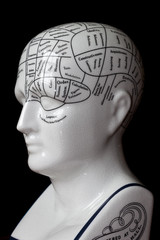 Phrenology head.