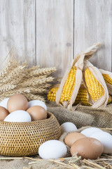 Huevos frescos de corral blancos y morenos de primera calidad