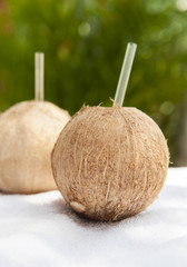 Refreshing Coconut Water Drinks