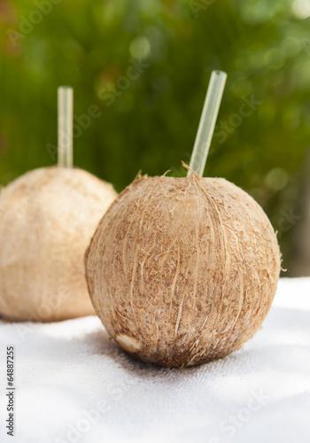 Refreshing Coconut Water Drinks