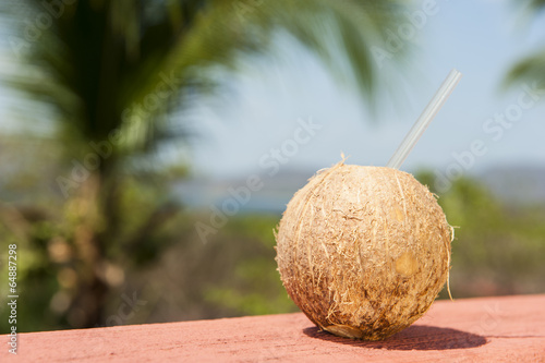 Coconut Water with Tropical Ocean Landscape