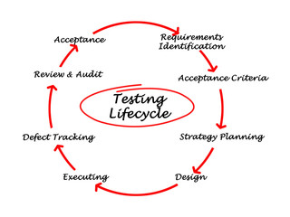 Testing Life Cycle