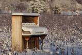 Fototapety Piano Abandoned in Winter Field
