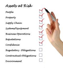 Assets at Risk