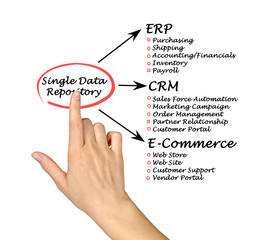 Single Data Repository