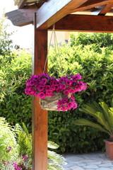 Vaso di fiori.