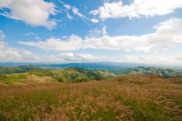 Grassland and mountains of Thailand