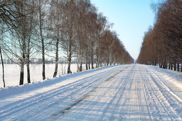 Winter snowy road between birch trees